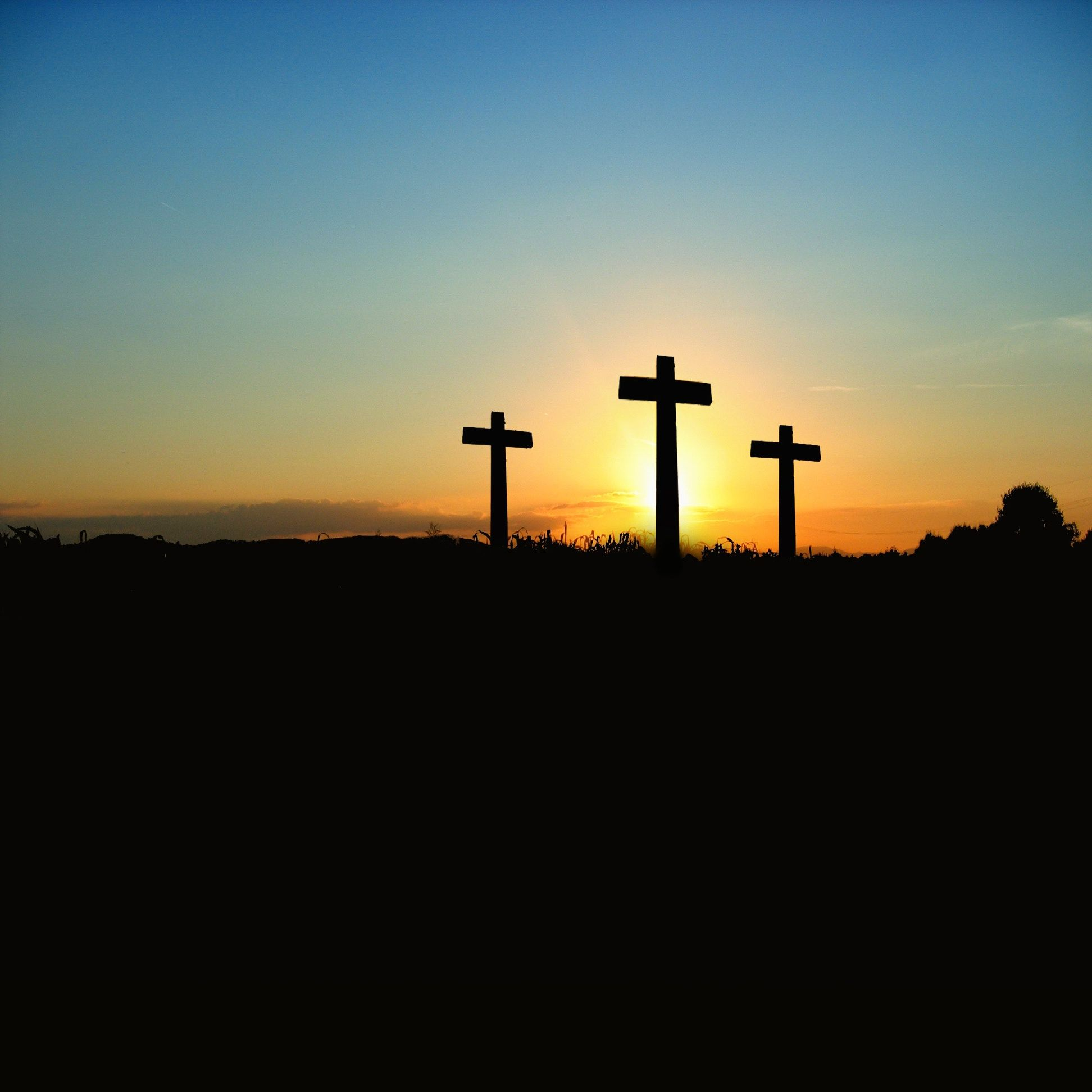 The David Spoon Experience